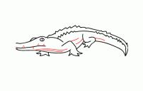 كيف ارسم تمساح 3