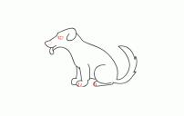 كيف ارسم كلب 1