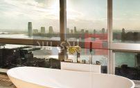 صور حمامات على النافذة 2