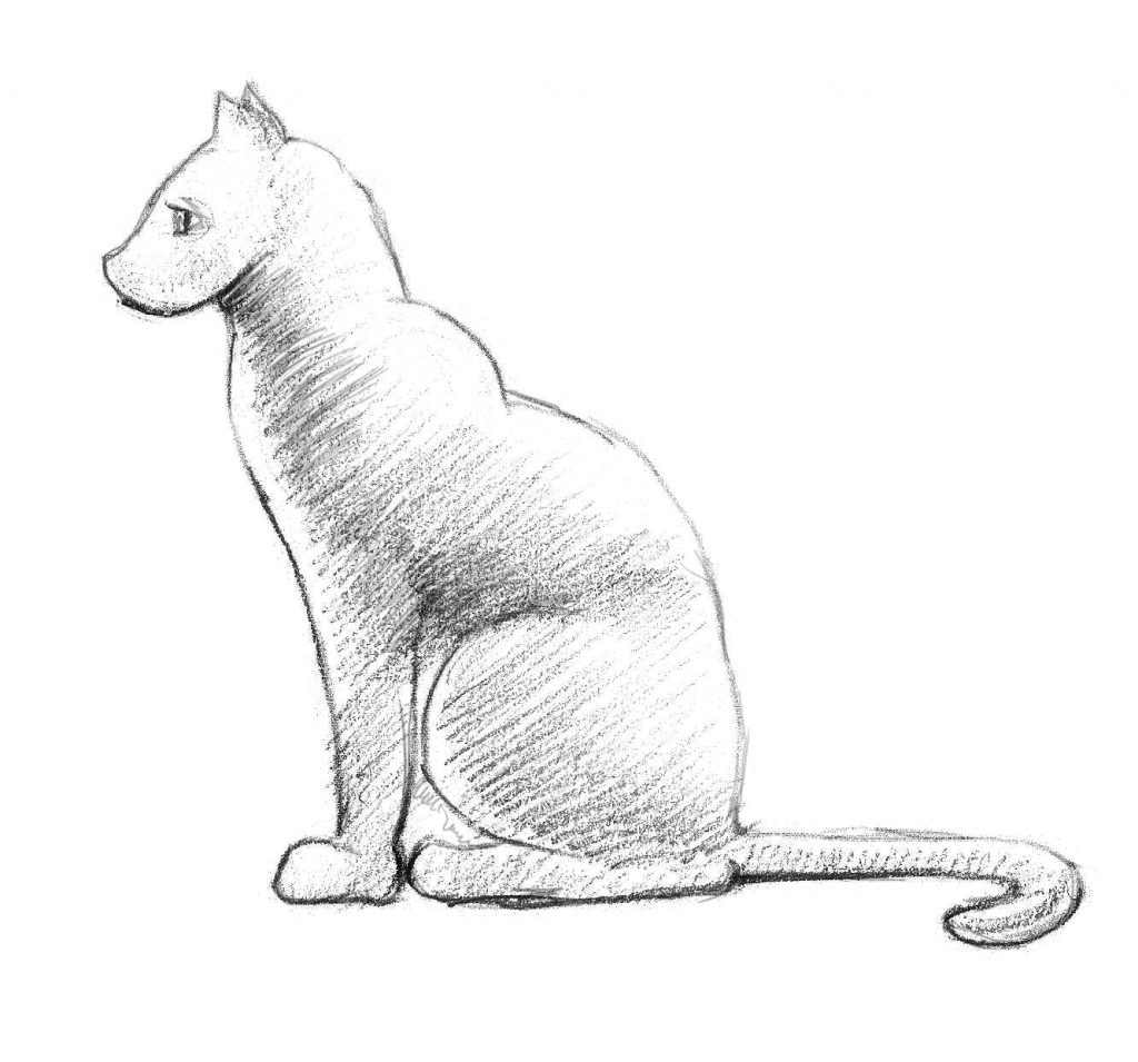 كيف ارسم قطة 25