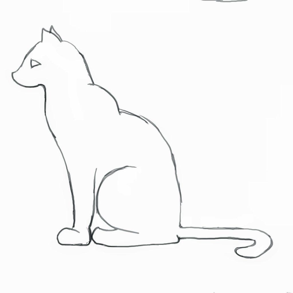 كيف ارسم قطة 24