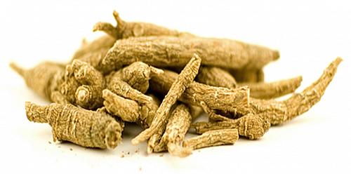siberian-ginseng-root