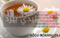 رسائل صباح الخير بالانجليزي 2