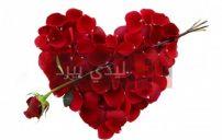 صور ازهار على شكل قلوب 3