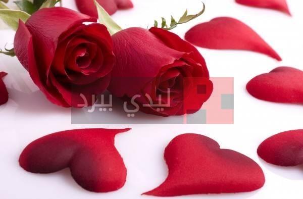 صور ورود حب رومانسية