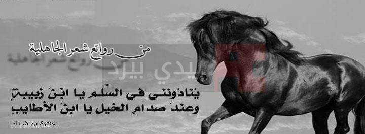 الشعر العربي الجاهلي 1