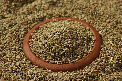 Ajwine-or-Carom-Seeds-is-an-uncommon-spice-opt