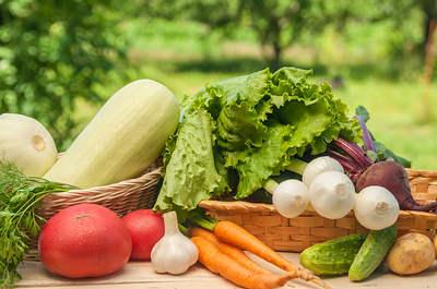 Vegetables-opt