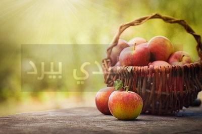 apples-in-basket-opt