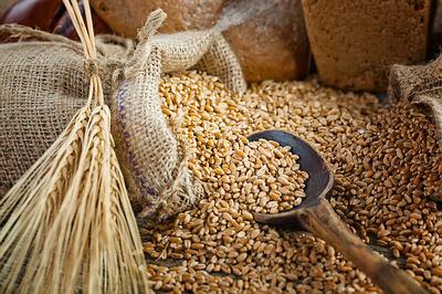 barley-opt