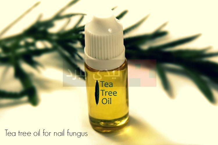 tea-tree-oil1