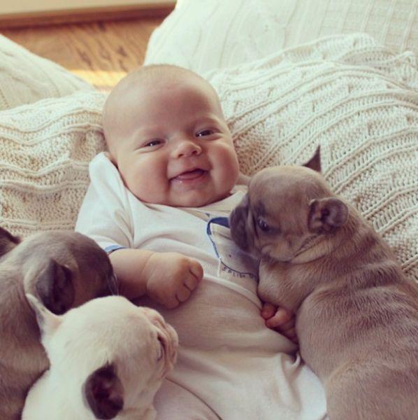 صور بيبي مضحكة مع كلاب
