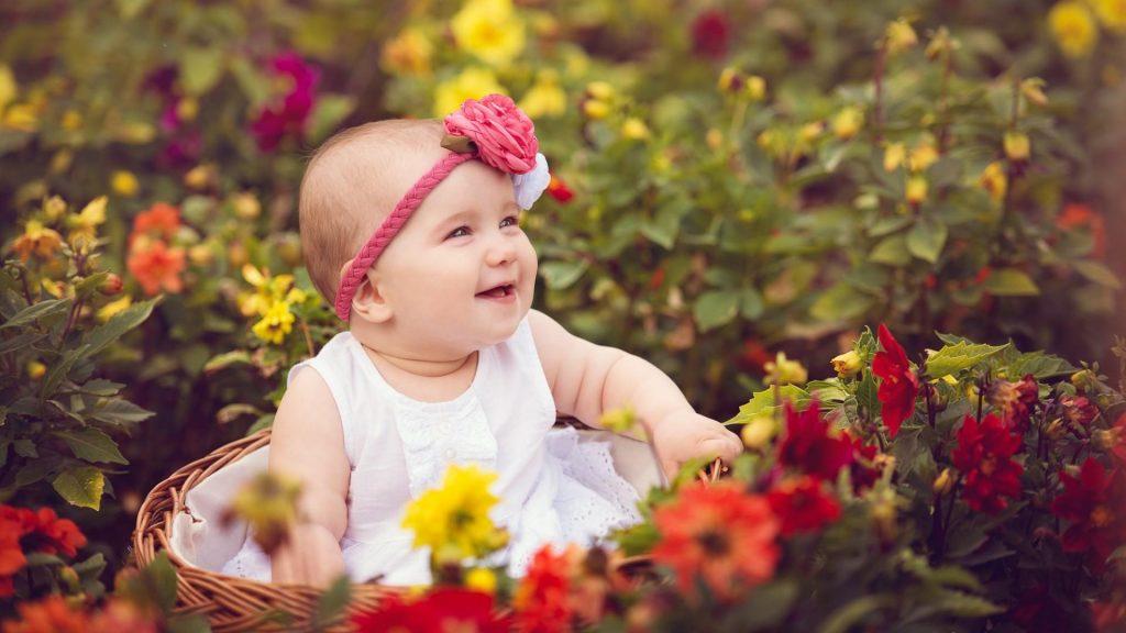 cute-baby-rose-garden