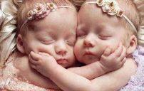 صور اطفال مولودة 1