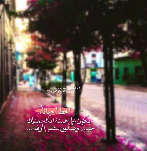 اجمل صور كلام حب