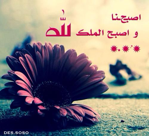 صور اسلامية مكتوبة