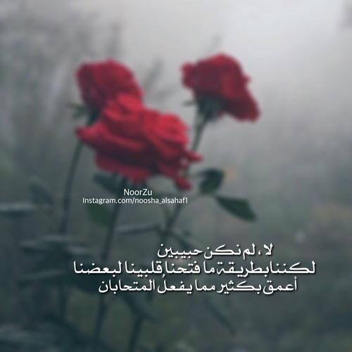 صور جميلة كلام حب
