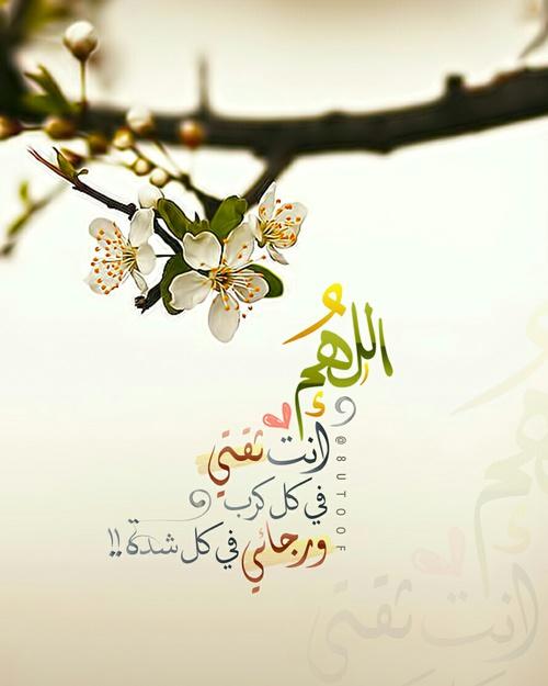 اجمل صور عرض اسلامية