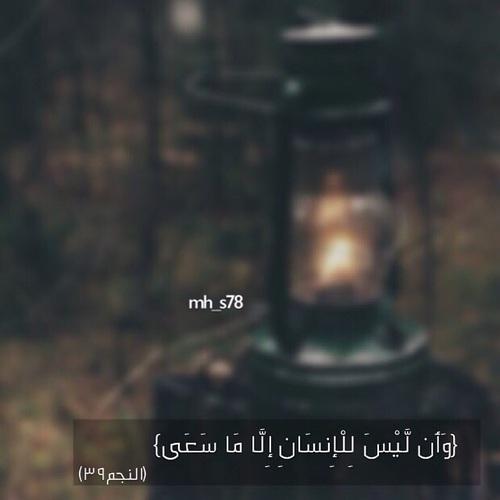 اجمل كلام جميل