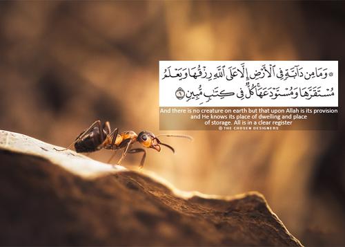 احلى صور اسلامية فيس بوك