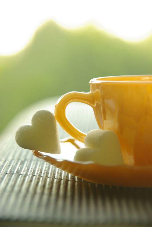 خلفيات فنجان الصباح