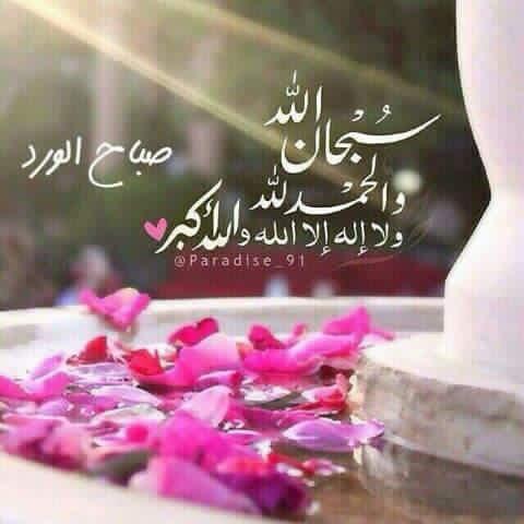 صباح الورد دينية
