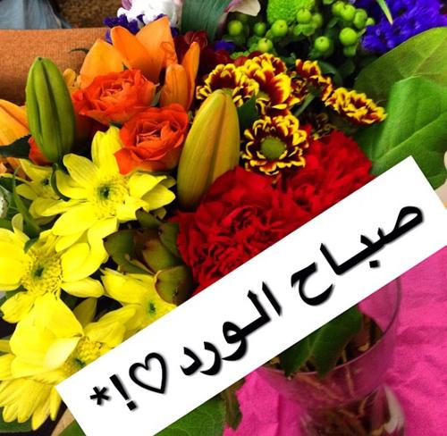 صباح الورد للحبيب