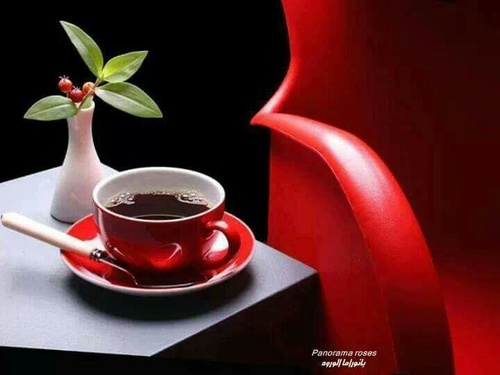 صور اجمل فنجان