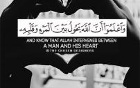احلى صور اسلامية 7