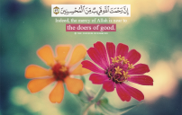 اجمل الصور الاسلامية 7