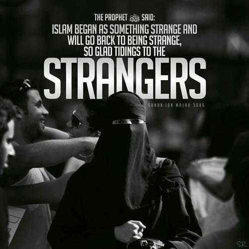 صور اسلامية عن الحجاب