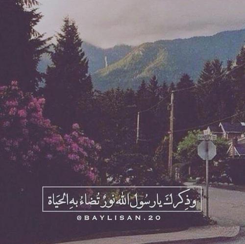 صور جميلة عن النبي
