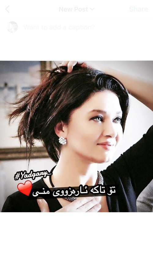 صور حب باللغة الكردية