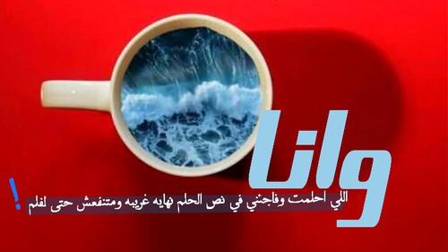 صور حب محمد حماقي