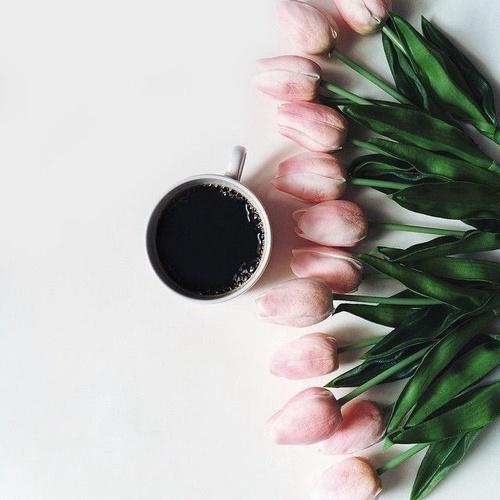 صور رومانسية للصباح