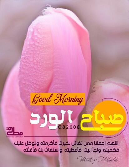 صور صباح الورد وادعية