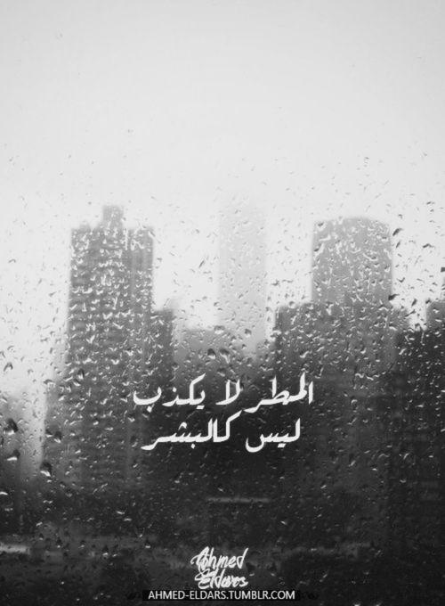 صور كلام جميل مطر