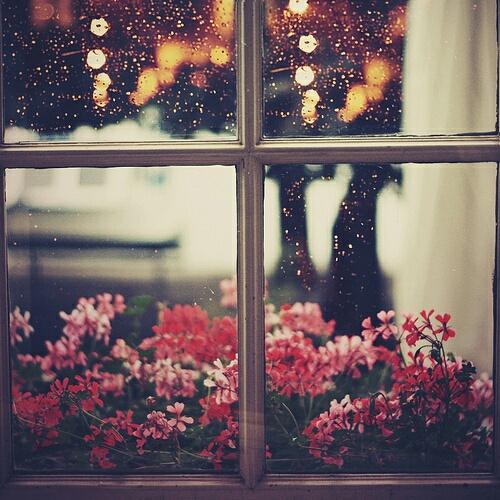 صور نافذة ممطرة