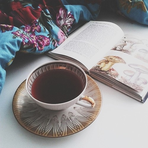 فنجان صباحي