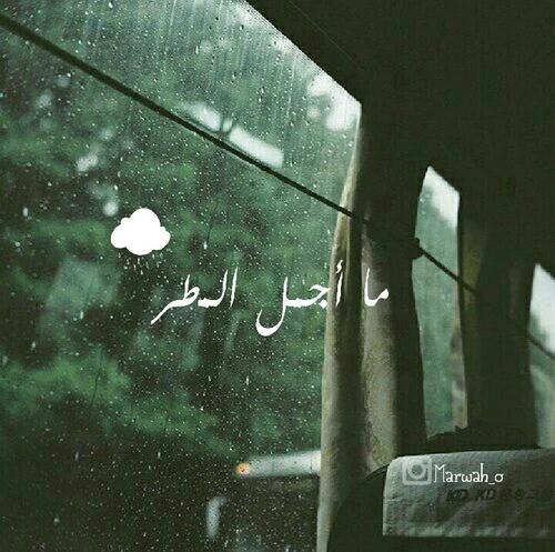 ما اجمل المطر