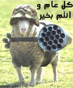 صور مضحكة خروف عيد الاضحى