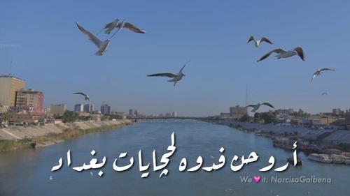 كلام عن حب العراق