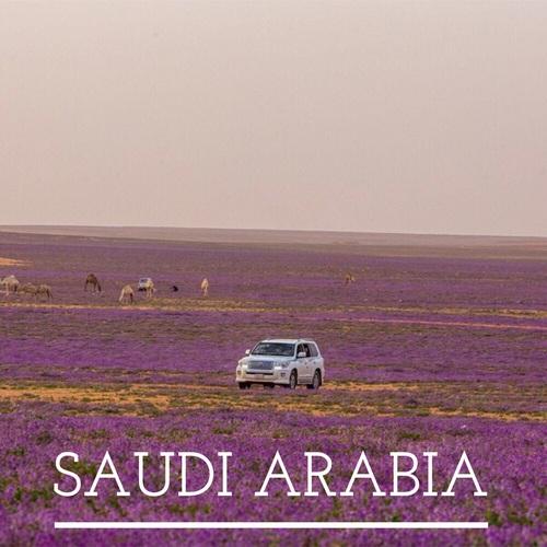 رمزيات مناظر سعودية 1