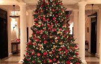 صور شجرة الكريسماس