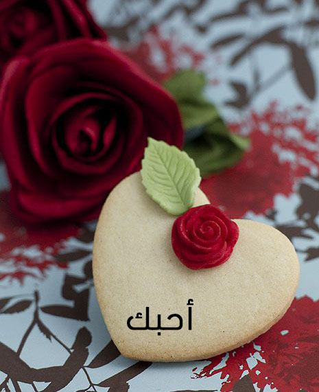 اجمل صور عيد الحب 6