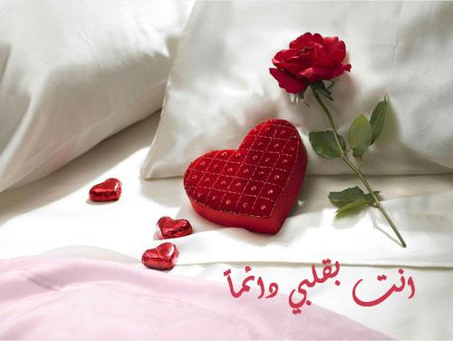 اجمل صور عيد الحب 9