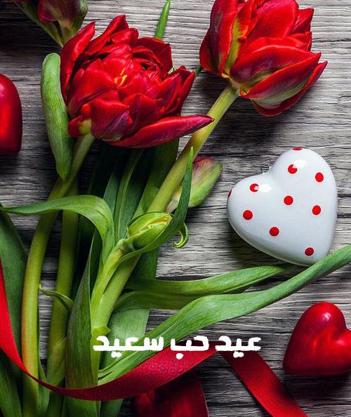 اجمل صور عيد الحب 8