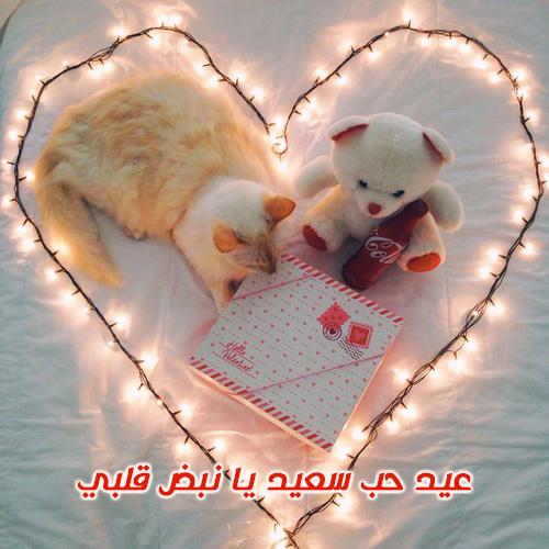 صور عيد الحب جديدة 10