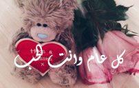 صور دباديب عيد الحب 2