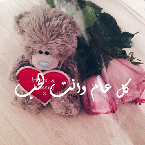 صور دباديب عيد الحب 26